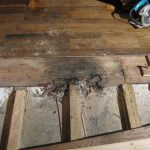 water damage restoration subfloor