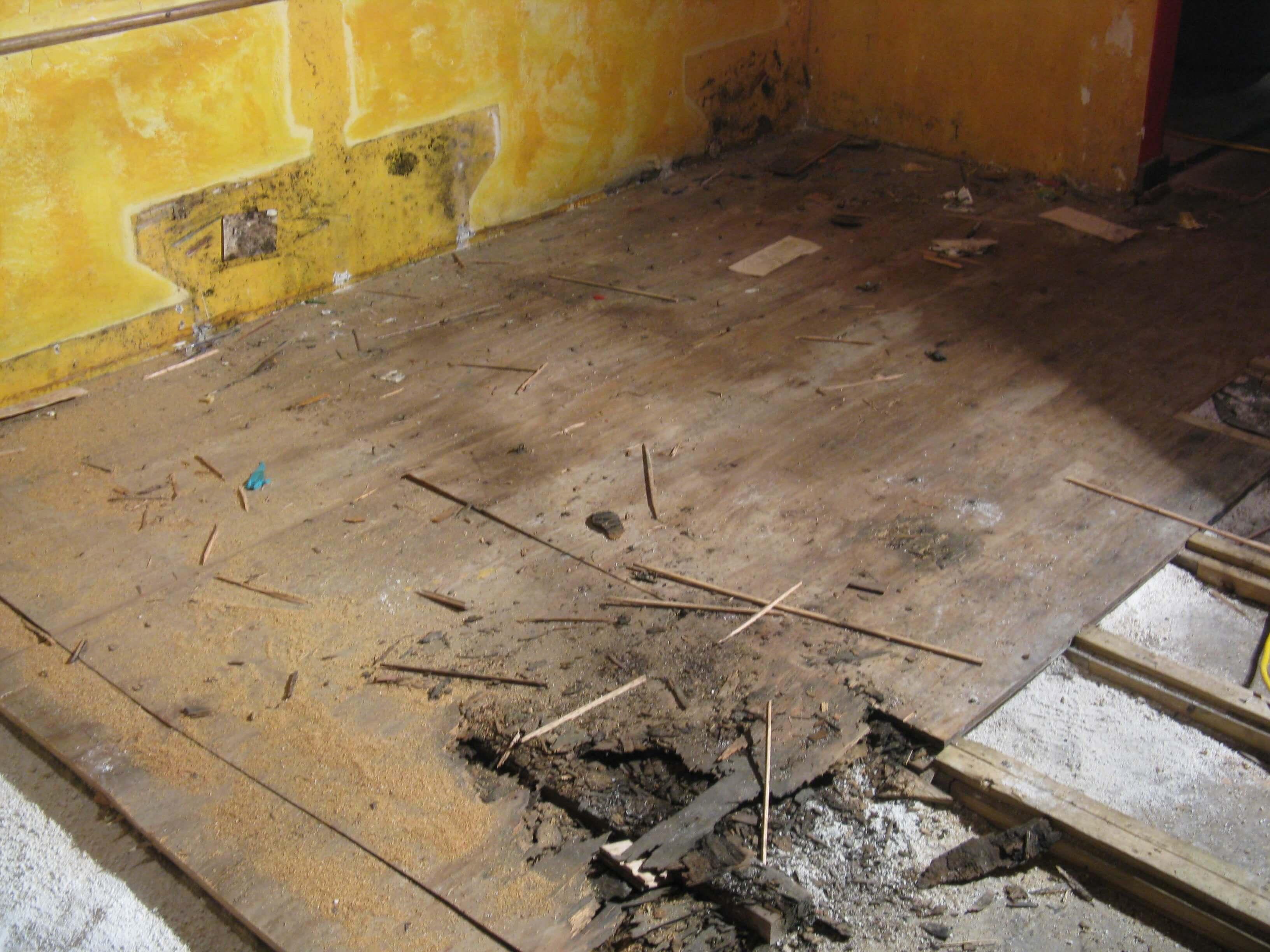 Water Damaged Flooring Ability Wood Flooring