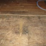water damage restoration replacement