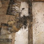 water damage restoration rot