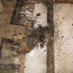 water damage restoration rot