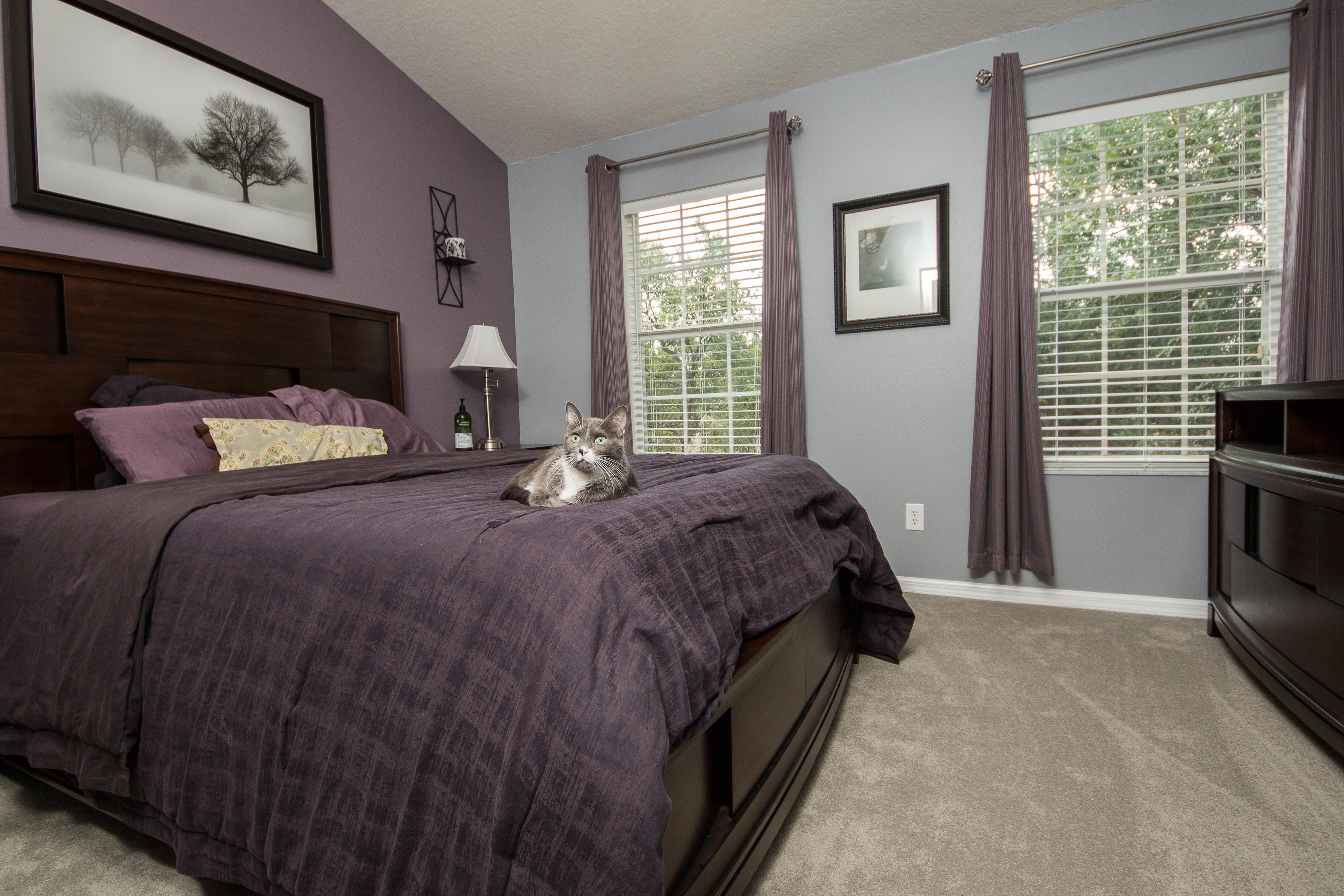 PVC Vinyl & Gray Carpet flooring master bedroom