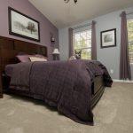 PVC Vinyl & Gray Carpet flooring in furnished master bedroom