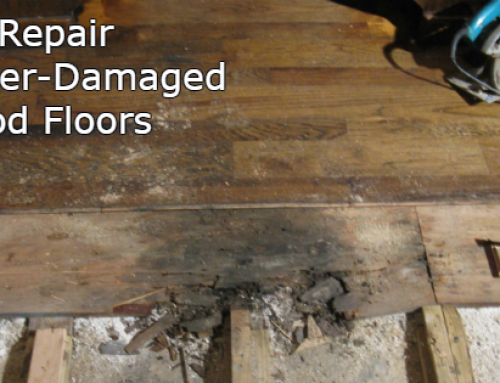 Water-Damaged Wood Floor Repair in Orlando